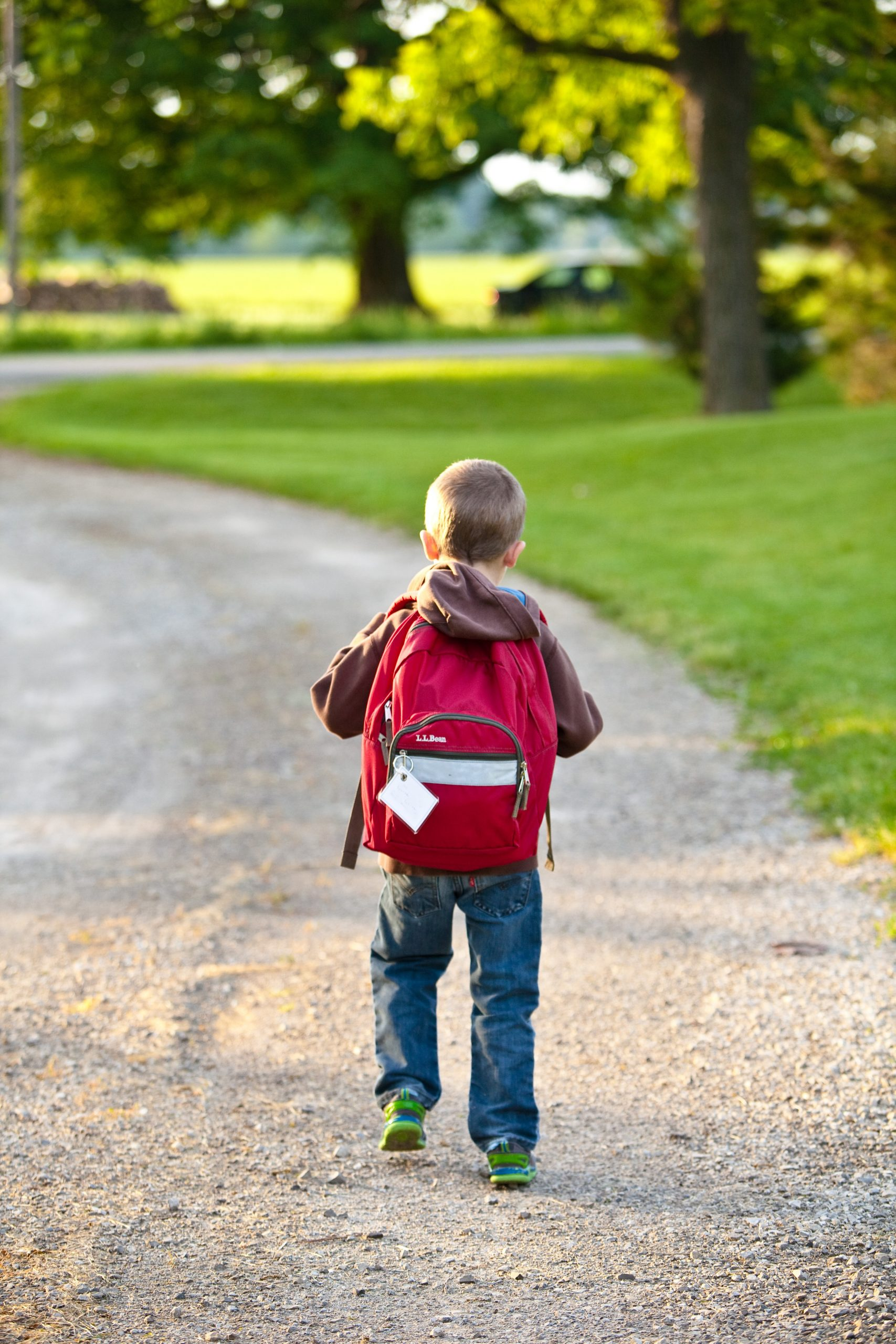 what should your 4 years old know academically