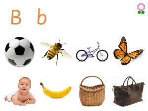 Alphabets Vocabulary book for Kids