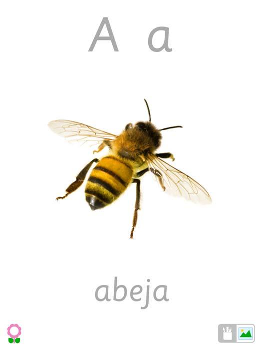 a-es-para-abeja-tarjetas-de-alfabeto-1