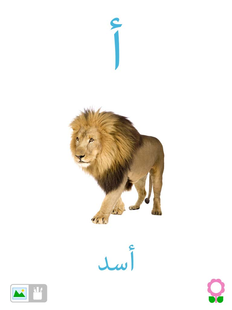 arabic-alphabets-with-pictures-3