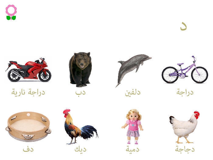 arabic-vocabulary-words-kids-2