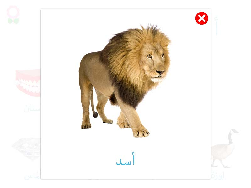 arabic-vocabulary-words-kids-3